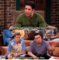 Friends, Memes, and Beach: What the hell happened on that beach?  DAILY FRIENDSCAPS  4x011  between us and thesea, Ross. When Monica got stung by a jellyfish 🙊🙊 • friends friendstv friendsshow friendsseries friendstvshow friendstvseries