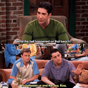 Friends, Memes, and Beach: What the hell happened on that beach?  DAILYFRIENDSCAPS  [4x01]  I's between.us and thesea, Ross. the iconic jellyfish episode😂🙌 [ friends friendstv friendsshow friendsseries friendstvshow friendstvseries ]
