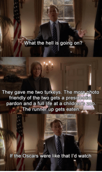 """In honor or the Academy Awards on Sunday: """"Pick a Turkey"""" [West Wing]: What the hell is going on?  They gave me two turkeys. The more photo  friendly of the two gets a presidential  pardon and a full life at a children's Zoo  The runner up gets eaten  If the Oscars were like that I'd watch In honor or the Academy Awards on Sunday: """"Pick a Turkey"""" [West Wing]"""