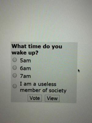 Dank, Memes, and Target: What time do you  wake up?  O 5am  O 6am  O 7am  o I am a useless  member of society  Vote View meirl by trailsandtris MORE MEMES