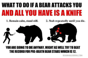 Bear, Death, and Record: WHAT TO DO IF A BEAR ATTACKS YOU  AND ALL YOU HAVE IS A KNIFE  1. Remain calm, stand s  2. Stab repeatedly until you die.  YOU ARE GOING TO DIE ANYWAY. MIGHT AS WELL TRYTO BEAT  THE RECORD FOR PRE-DEATH BEAR STABS WHICH IS 12.  BEARMAGEDDON COM