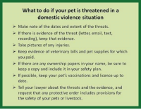 Lawyer, Memes, and Pets: What to do if your pet is threatened in a  domestic violence situation  Make note of the dates and extent of the threats.  If there is evidence of the threat (letter, email, text,  recording), keep that evidence.  Take pictures of any injuries  Keep evidence of veterinary bills and pet supplies for which  you paid  If there are any ownership papers in your name, be sure to  keep a copy and include it in your safety plan.  If possible, keep your pet's vaccinations and licence up to  date.  Tell your lawyer about the threats and the evidence, and  request that any protective order includes provisions for  the safety of your pets or livestock. October is Domestic Violence Awareness Month and many times women stay in the relationship because of their pets. This is really good information : What to do if your pet is threatened in a Domestic Violence situation : #domesticviolenceawareness