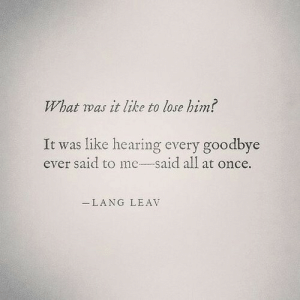 Like hearing every goodbye ever said to me, all at once: What was it like to lose hin?  It was like hearing every goodbye  ever said to me-said all at once.  LANG LEAV Like hearing every goodbye ever said to me, all at once