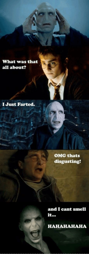 Funny, Omg, and Smell: What was that  all about?  I Just Farted.  OMG thats  disgusting  and I cant smell  it...  HAHAHAHAHA Who actually thinks these are funny?