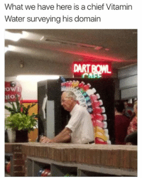 Dank, Water, and 🤖: What we have here is a chief Vitamin  Water surveying his domain