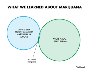 Dank, Facts, and School: WHAT WE LEARNED ABOUT MARIJUANA  THINGS THEY  TAUGHT US ABOUT  MARIJUANA IN  SCHOOL  FACTS ABOUT  MARIJUANA  It's called  marijuana  Civilized.
