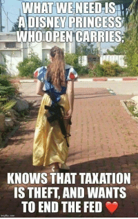 Princess, Com, and Who: WHAT WE NEED IS4  ADISNEY PRINCESS  WHO OPEN CARRIES  KNOWS THAT TAXATION  IS THEFT, AND WANTS  TO END THE FED  imgflip.com