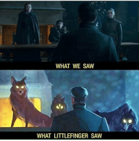 Memes, Saw, and 🤖: WHAT WE SAW  WHAT LITTLEFINGER SAW https://t.co/RHTNolXrvE