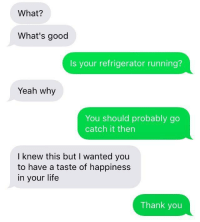Life, Yeah, and Thank You: What?  What's good  Is your refrigerator running?  Yeah why  You should probably go  catch it then  I knew this but I wanted you  to have a taste of happiness  in your life  Thank you Very wholesome via /r/wholesomememes https://ift.tt/2EeSLAQ