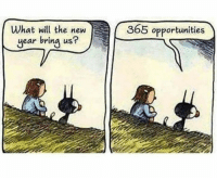 Let the countdown begin: What will the new  year bring us?  365 opportunities Let the countdown begin