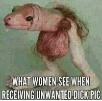 Reddit, Awkward, and Dick: WHAT WOMEN SEE WHEN  RECEIVING UNWANTED DICK PIC