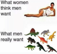 don't fuck w my dinosaur collection ever: What women  think men  want  What men  really want don't fuck w my dinosaur collection ever