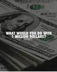 Memes, 🤖, and You: WHAT WOULD YOU DO WITH  MILLION DOLLARS? What would you do? 👇