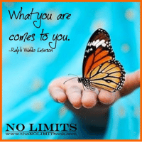What you are  comes you.  Ralph Waldo Emerson  NO LIMITS  www ww.theNTOLIMMITbook.comm What you are comes to you. -Ralph Waldo Emerson  #abundance #NoLimitBook #prosperity Preorder my book, NO LIMITS here: http://thenolimitbook.com/