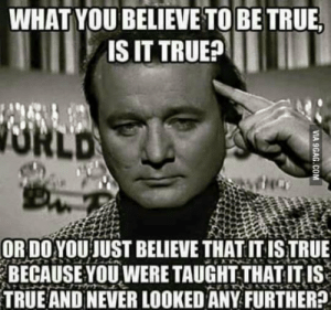 True, Never, and How: WHAT YOU BELIEVE TO BE TRUE  IS IT TRUE  ORDO YOU JUST BELIEVE THATIT ISTRUE  BECAUSE YOU WERE TAUGHT THATITIS  TRUE AND NEVER LOOKED ANY FURTHER? How many sheep just believe blindly?
