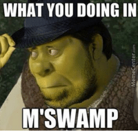 What Are You Doing In My Swamp: WHAT YOU DOING IN  CU  M'SWAMP