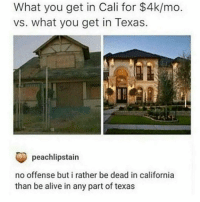I've never been to the south, Texas seems cool tbh. Do y'all ride horses to school? LMAO: What you get in Cali for $4k/mo  vs. what you get in Texas.  peachlipstain  no offense but i rather be dead in california  than be alive in any part of texas I've never been to the south, Texas seems cool tbh. Do y'all ride horses to school? LMAO