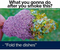 """You like stuff like that? Want some equipment to support your 4/20-lifestyle? Check out our homepage! https://www.the420district.com #high #cannabis #weed #smoking #hase: What you gonna do  after you smoke this?  facebook.com/weedlaughs420  """"Fold the dishes""""  9) You like stuff like that? Want some equipment to support your 4/20-lifestyle? Check out our homepage! https://www.the420district.com #high #cannabis #weed #smoking #hase"""