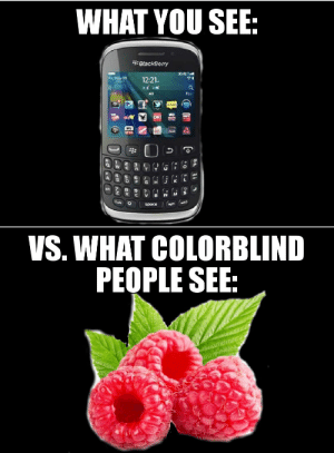 Are blackberry fuck ups can suggest
