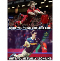 Rugby, You-Think-You, and Dive: WHAT YOU THINK YOU LOOK LIKE  RUGBY  MEMES  WHAT YOU ACTUALLY LOOK LIKE Diving problems 😂 rugby