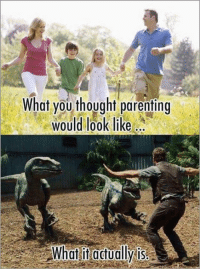What you thought parenting  would look like  What it actually is #DC