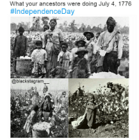 Blackhistory, Black Lives Matter, and Community: What your ancestors were doing July 4, 1776  #IndependenceDay  @blackstagram This is all I have to say about 4thofJuly. Our people were not independent then and did not become independent after the 1776. @nefertiti_community independenceday blacklivesmatter BLM blackunity blackhistorymonth blackhistory ancestors becauseofthemwecan africanamerican melanin ebony panafrican blackcommunity problack brownskin blackexcellence blackpride blackandproud blackpower