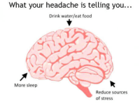 """Club, Food, and Tumblr: What your headache is telling you...  Drink water/eat food  More sleep  Reduce sources  of stress <p><a href=""""http://laughoutloud-club.tumblr.com/post/159496706294/useful-tip-especially-for-those-studying-or"""" class=""""tumblr_blog"""">laughoutloud-club</a>:</p>  <blockquote><p>Useful tip especially for those studying or working hard!</p></blockquote>"""