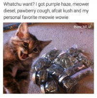 Memes, Diesel, and Lmfao: Whatchu want? got purrple haze, meower  diesel, pawberry cough, afcat kush and my  personal favorite meowie wowie  @some bull ish Lmfao 😀😂 🍁Follow ➡ @weedsavage 🍁 📷: @some_bull_ish