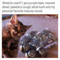 Dope, Memes, and Diesel: Whatchu want? I got purrple haze, meower  diesel, pawberry cough, afcat kush and my  personal favorite meowie wowie  osome bullish My dealer sells only the dopest dope 🔥👌 Follow @some_bull_ish 👈 for more