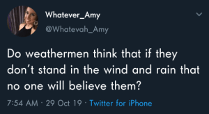 Meirl: Whatever_Amy  @Whatevah_Amy  Do weathermen think that if they  don't stand in the wind and rain that  no one will believe them?  7:54 AM 29 Oct 19 Twitter for iPhone Meirl
