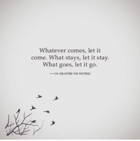 ;: Whatever comes, let it  come. What stays, let it stay.  What goes, let it go.  VIA (QUOTES 'ND NOTES) ;