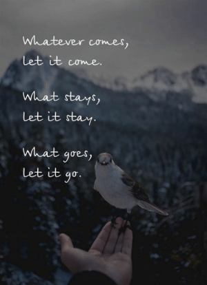 Let It Go, Stay, and What: Whatever comes,  Let it come.  What stays,  Let it stay.  What goes  Let it go.