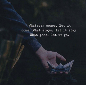 Let It Go, Stay, and What: Whatever comes, let it  come. What stays, let it stay.  What goes, let it go.
