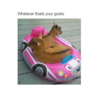 PLL: Whatever floats your goats PLL