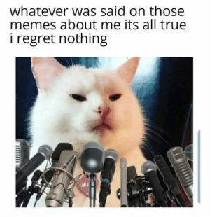 No Ragrets: whatever was said on those  memes about me its all true  regret nothing No Ragrets