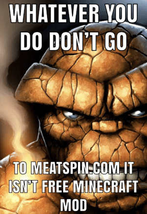 ive seen thinfgs 🤢😳😬👎👎: WHATEVER YOU  DO DON'T GO  TO MEATSPIN-COM IT  ISN'T FREE MINECRAFT  MOD ive seen thinfgs 🤢😳😬👎👎
