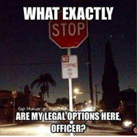 WHATEXACTLY  STOP  NO  STOPPING  cop Humor an  ARE MY LEGALOPTIONS HERE  OFFICER