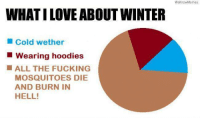 We Know Meme: WHATILOVEABOUT WINTER  Cold wether  Wearing hoodies  ALL THE FUCKING  MOSQUITOES DIE  AND BURN IN  HELL!  We know Memes