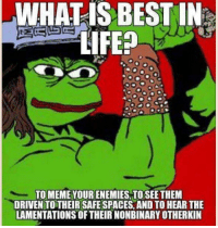 Life, Best, and What Is: WHATIS BEST IN  LIFE  TOMEME YOUR ENEMIES TOSEETHEM  DRIVEN TOTHEIR SAFE SPACES, AND TO HEAR THE  LAMENTATIONS OF THEIR NONBINARY OTHERKIN