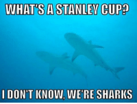 The team that wanted it more won. gg oilers and goodnight Instagram: WHATS A STANLEY CUP  I DON'T KNOW, WERE SHARKS The team that wanted it more won. gg oilers and goodnight Instagram