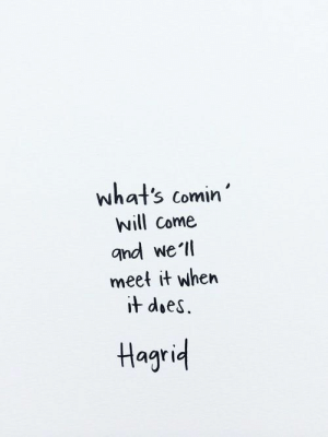 hagrid: what's comin'  will Come  gnd we'll  meet it when  it does.  Hagrid