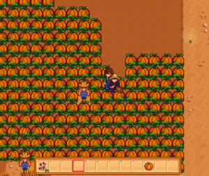 What's happening in these pumpkin fields? (bug) :^): What's happening in these pumpkin fields? (bug) :^)