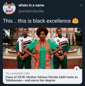Twins, Black, and Florida: whats in a name  (@arealvickyvibe  This .. this is black excellence  ARTS  MNITIES  TALLAHASSEE.COM  Class of 2019: Mother follows Florida A&M twins to  Tallahassee and earns her degree tis the SZN🙌🏾