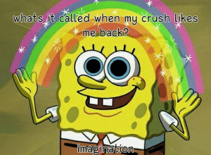 Crush, Back, and Imagination: whats it called when my crush likes  me back?  imagination Anytime ever