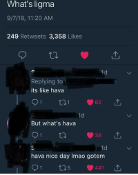 Nice, Day, and Whats: What's ligma  9/7/18, 11:20 AM  249 Retweets 3,358 Likes  Replying to  its like hava  t11  1d  But what's hava  38  1d  hava nice day Imao gotem He didn't see it coming