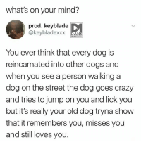 Crazy, Dogs, and Dank Memes: what's on your mind?  prod. keyblade  @keybladexxxNS  You ever think that every dog is  reincarnated into other dogs and  when you see a person walking a  dog on the street the dog goes crazy  and tries to jump on you and lick you  but it's really your old dog tryna show  that it remembers you, misses you  and still loves you. Strong case