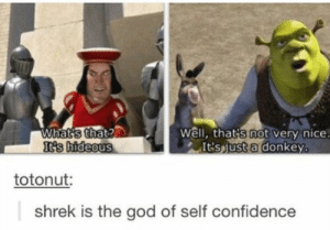 100+ Funniest Black Memes Photos Of All Time | WittyMania: What's that?  It's hideous  Well, that's not very nice.  It'sjust a donkey.  totonut:  shrek is the god of self confidence 100+ Funniest Black Memes Photos Of All Time | WittyMania