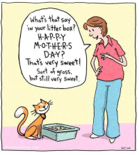 One of my favs! <3 >^..^<: What's that say  IN Your litter box?  MOTHERS  DAY?  That's very sweet!  Sort of gross,  but still very sweet  -briaN One of my favs! <3 >^..^<