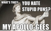 Memes, Apollo, and 🤖: WHATS THAT? YOU HATE  STUPID PUNSP  MY APOLLO GEES You hate stupid puns? My Apollo-Gees.