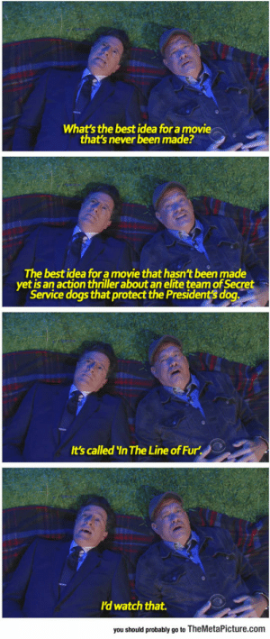 srsfunny:Stephen Colbert and Tom Hanks Ask Each Other Deep Questions: What's the best idea for a movie  that's never been made?  The best idea for a movie that hasn't been made  yet is an action thriller about an elite team of Secret  Service dogs that protect the President's dog  t's called In The Line of Fur  ld watch that.  you should probably go to TheMetaPicture.com srsfunny:Stephen Colbert and Tom Hanks Ask Each Other Deep Questions